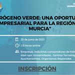 AHMUR celebra un webinar sobre la Oportunidad que supone el hidrógeno verde en la Región de Murcia.